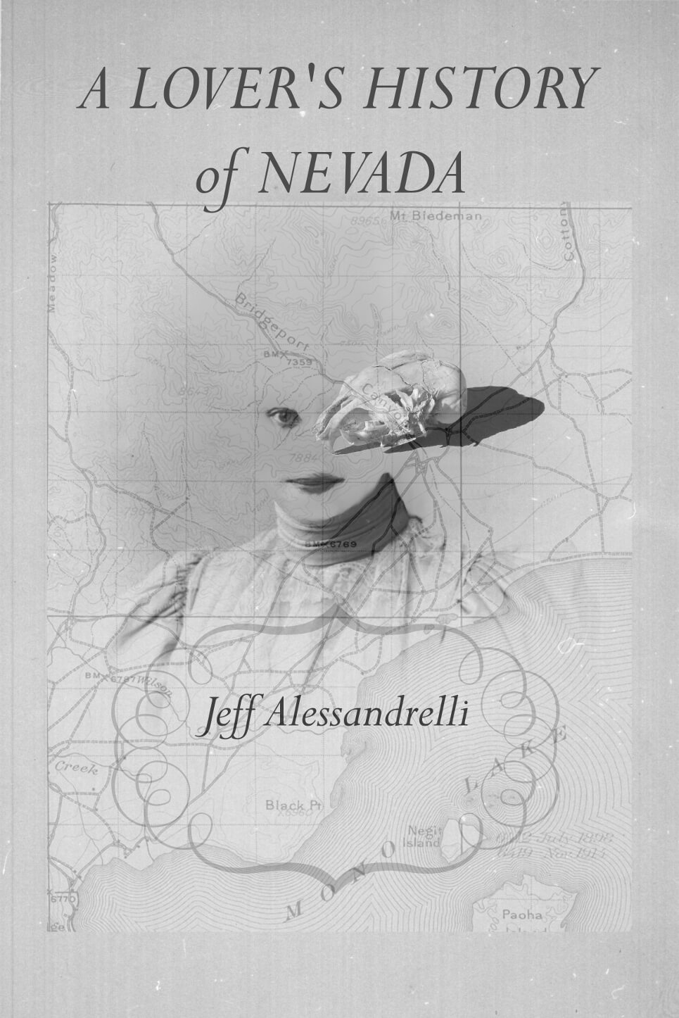 A Lover's History of Nevada